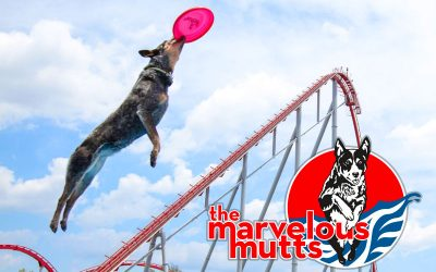 Marvelous Mutts
