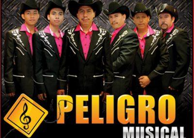 Peligro Musical